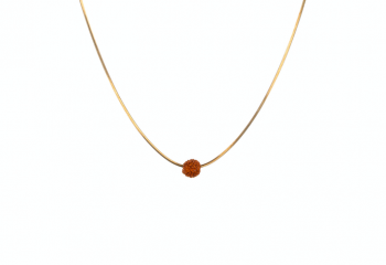 SHIVA - Pozlacený řetízek 48 cm, semeno Rudraksha