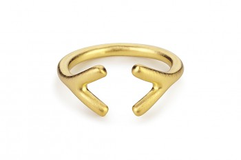 WAI Ring YY - Silver gold plated matt ring