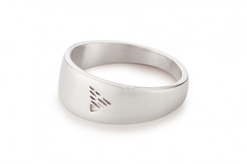 Element EARTH - silver ring, matte