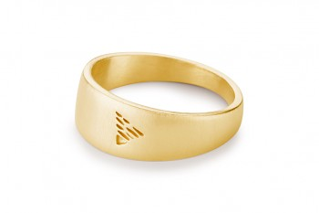 Element EARTH - silver ring gold plated, matte