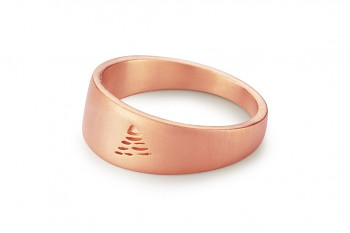 Element AIR - silver rose gold plated ring, matte
