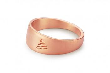 Element VZDUCH - stříbrný prsten pozlacený růžovým zlatem, mat