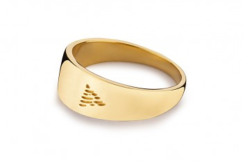 Element FIRE - silver gold plated ring, glossy
