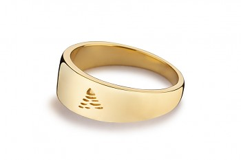 Element AIR - silver ring gold plated, glossy