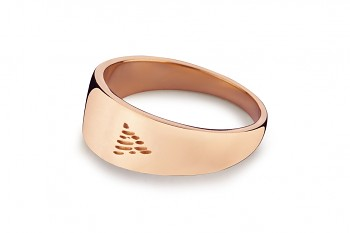 Element FIRE - silver rose gold plated ring, glossy