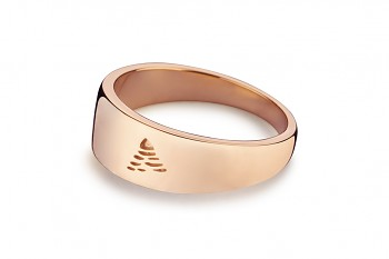 Element AIR - silver rose gold plated ring, glossy